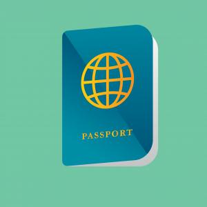 דרכון פספורט